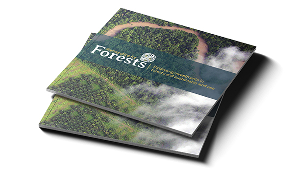 P4F_Brochure_mockup_cover_web