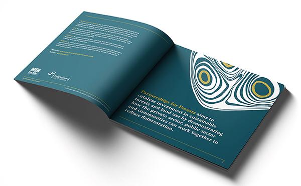 P4F_Brochure_mockup_spread1_v2